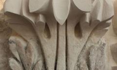 Acanthus leaf tip